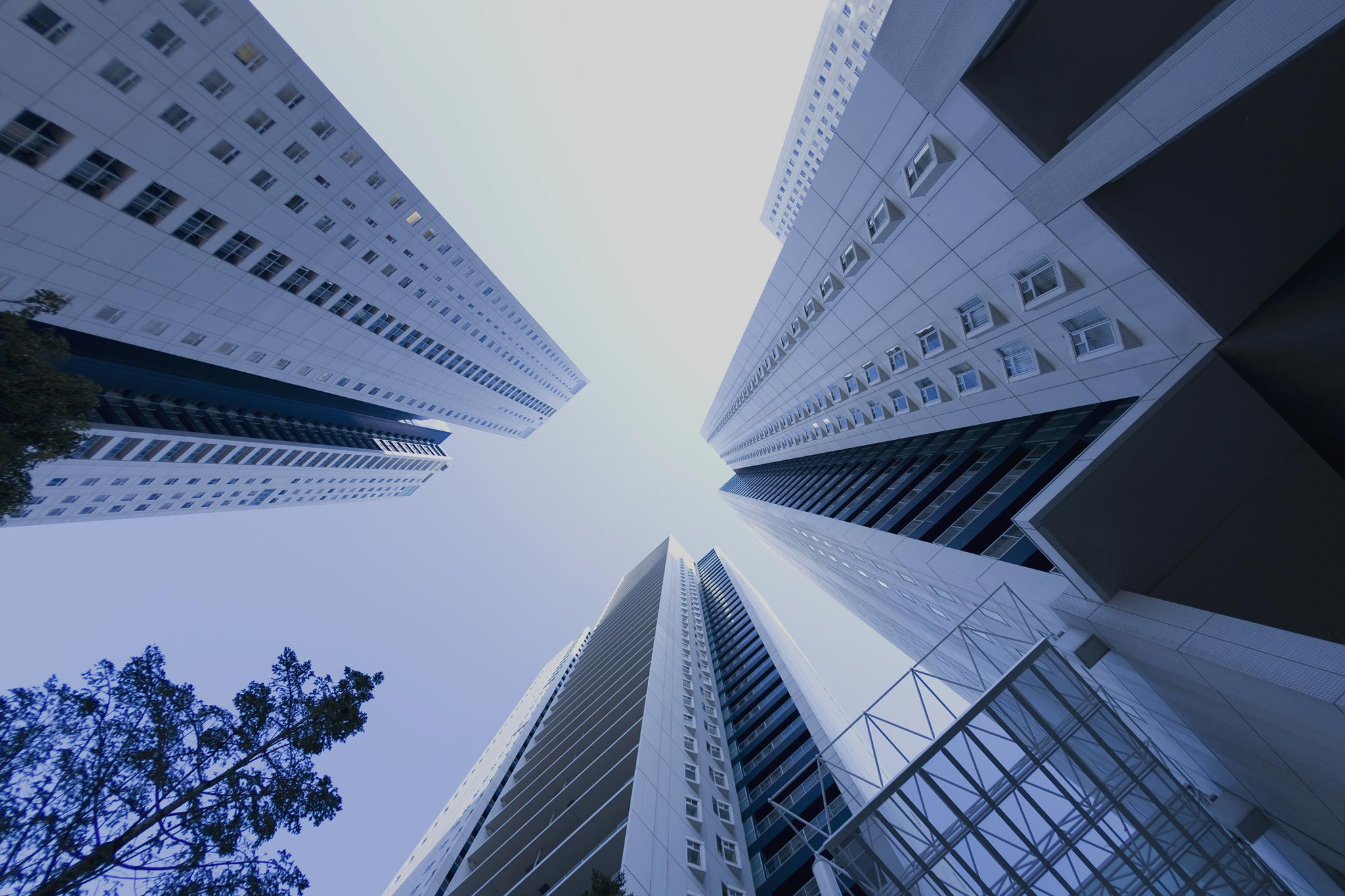 Looking up at high rise buildings